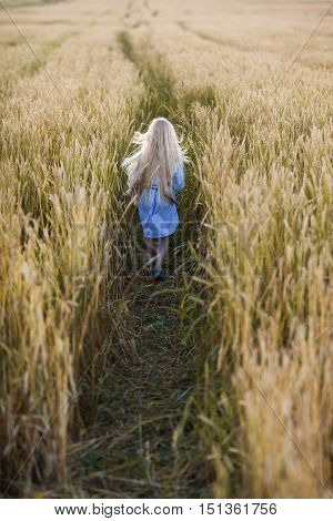 happy little blonde girl running in wheat field with long hair