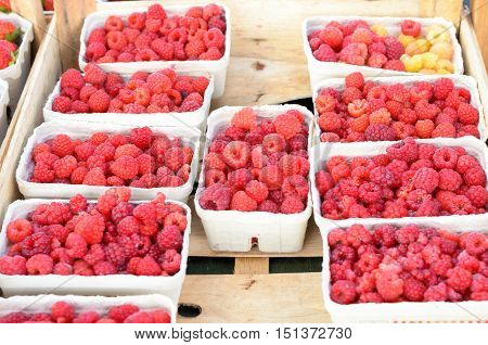 Punnets Of Fresh Raspberries In A Supermarket