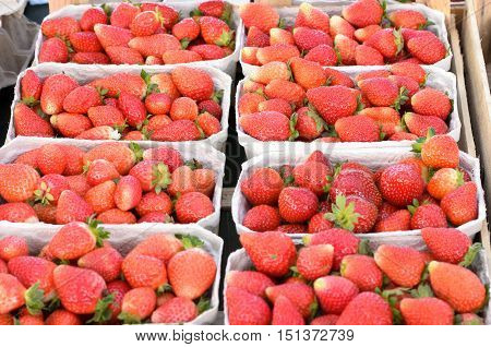 Punnets Of Fresh Strawberries In A Supermarket