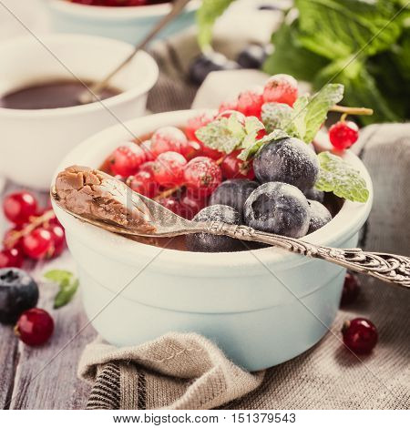 Delicious chocolate dessert with berries and mint served in ramekin. Retro style toned.