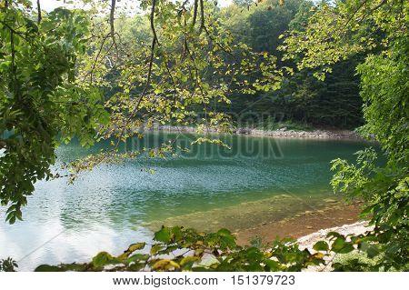 Lake In The Mountains Biogradska Gora National Park, Montenegro