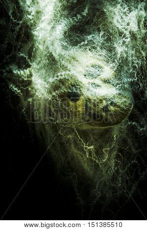 Dark scary artwork on a skeleton head caught in spiderweb funnel. Victim of prey
