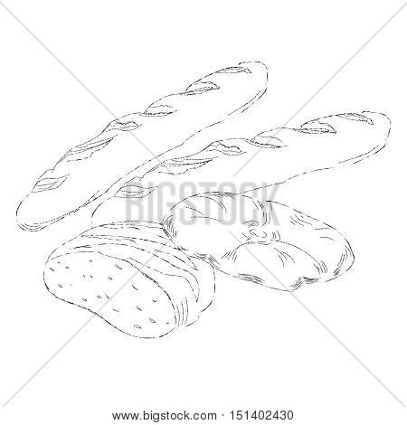 Hand drawing illustration of different breads . Isolated sketch of bread