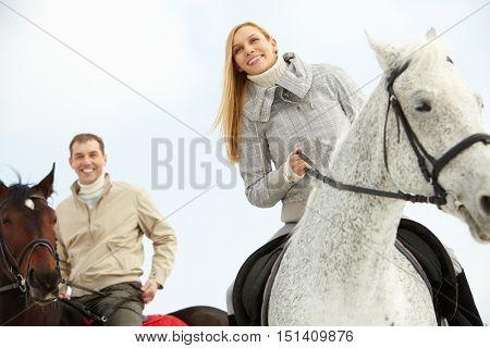 Beautiful horsemen