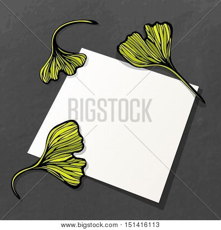 Overhead view of blank paper sheet and leaves of ginkgo biloba. Scrapbook or herbarium card template. Copy space. Vector illustration.