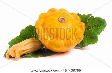 yellow pattypan squash with leaf and flower isolated on white background.