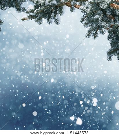 Winter Christmas background with fir tree branch and cones.Merry christmas and happy new year greeting card with copy-space.Winter christmas landscape.Snow background