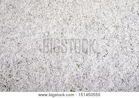 highly detailed background from shredded paper particles