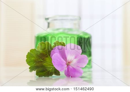 Essential geranium oil in glass bottle and geranium flowers