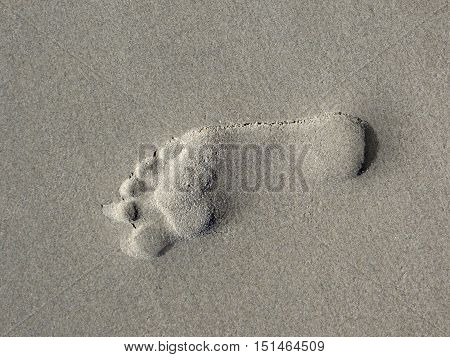 picture of a single footprint in the sand