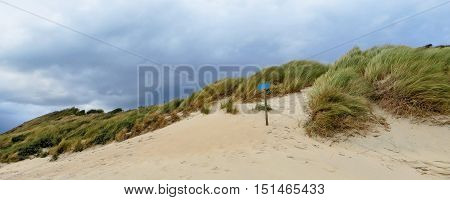 sunny scenery including a sanddune in the Netherlands