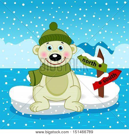 Polar bear on an  floe - vector  illustration, eps
