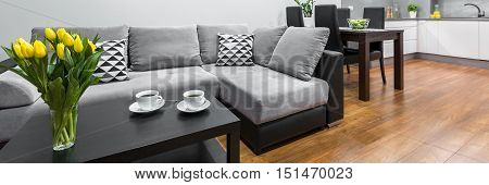 Modern Flat With Large Sofa