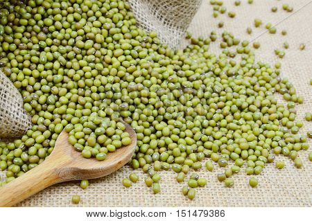 Green Mung Beans are high protein, low calorie food that is packed with vitamins and minerals.
