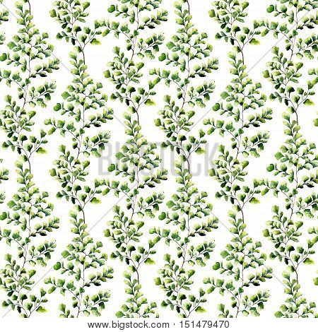 Watercolor maidenhair fern seamless pattern. Hand painted fern ornament. Floral illustration isolated on white background. For design, textile and background.