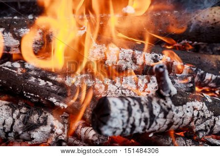 Firewood In Flame Close-up Stock Photography