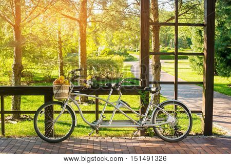 Bike with basket of fruits. Tandem bicycle near the fence. Warm summer weather. Organize a romantic picnic.