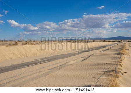 Desert Across Empty Road