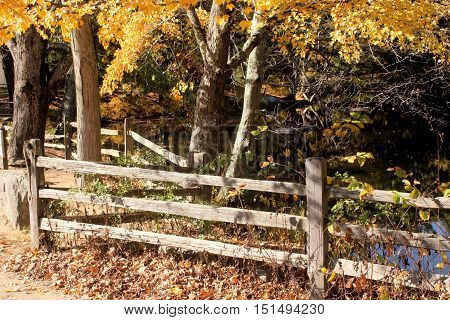 Split rail fencing on the shore of a small pond on an autumn day.