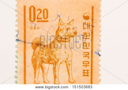 KOREA - DECEMBER 31,1962: A stamp issued in Korea showing a picture of a Jindo which is indigenous to Korea.  Design by Kang Choon Whan.