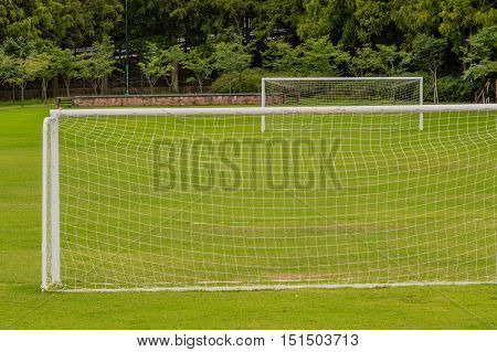 Two white soccer goals on a field of green grass with a treeline in the background