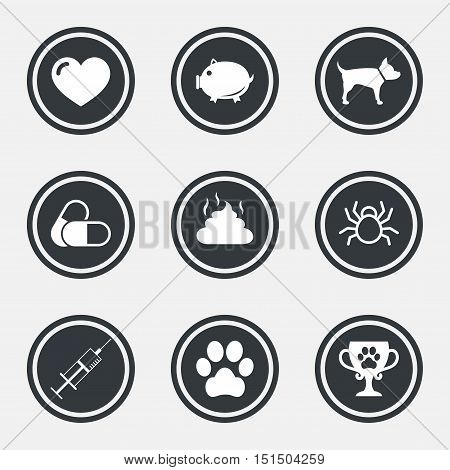 Veterinary, pets icons. Dog paw, syringe and winner cup signs. Pills, heart and feces symbols. Circle flat buttons with icons and border. Vector