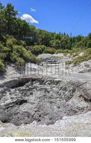 Crater In Wai-o-tapu Thermal Wonderland In Rotorua, Nz
