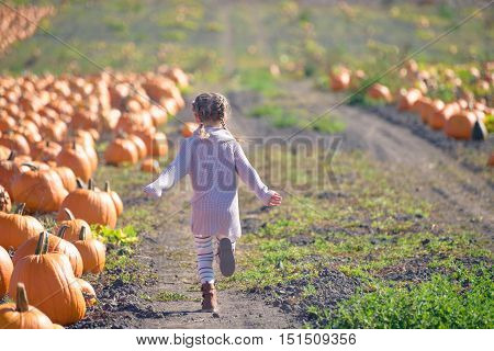 Happy girl in knitted sweater running on the field to choose pumpkin at the farm