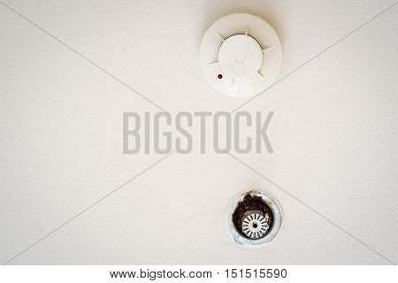 Smoke detector and old/rusty pendent fire sprinkler on a ceiling.