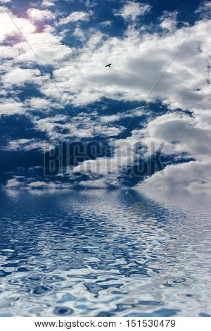 ocean surface under sunny beautiful cloudy sky