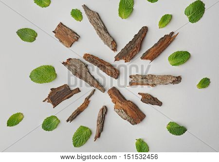 Scattering of green leaves and pieces of bark on white background