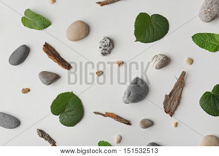 Scattering of leaves, pebbles and pieces of bark on white background