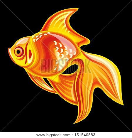 Collection of mascots: goldfish. Vector objects talismans Feng Shui on a black background.