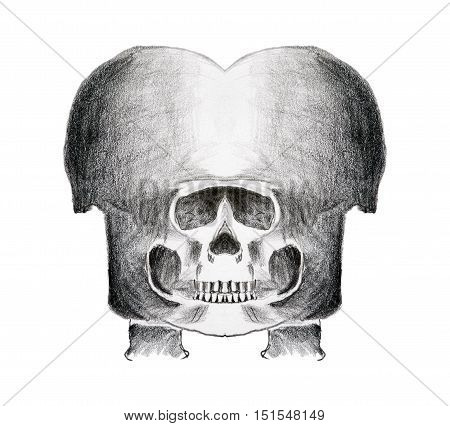Abstract drawing of the skull - pencil on paper