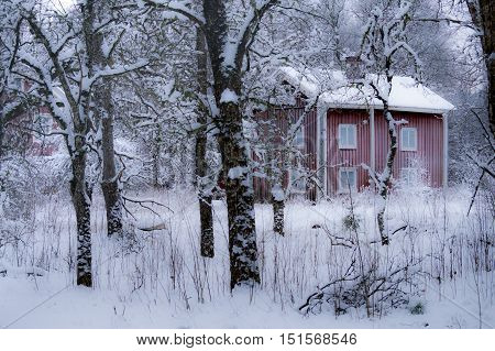 Old house on the nordic countryside in mid winter. Ice cold with frost on windows.