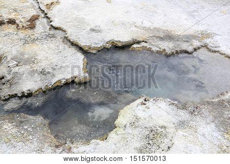 Soda Fountain Thermal Area Orakei Korako In New Zealand