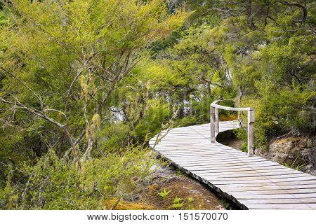 Wooden Walkway Geothermal Area Orakei Korako In New Zealand