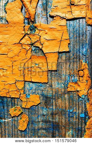 Large Fragments Of Old Peeling Paint Color Ocher, On An Old Wooden Surface.