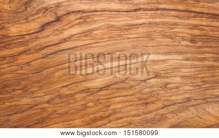 Background texture board cut from olive wooden tree