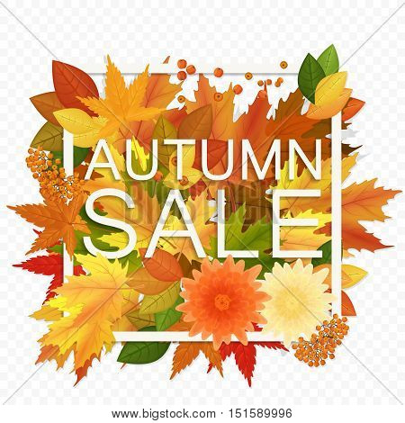 Autumn sale discount banner on the transperant alpha background. Modern style autumn Poster with golden orange foliage leaves