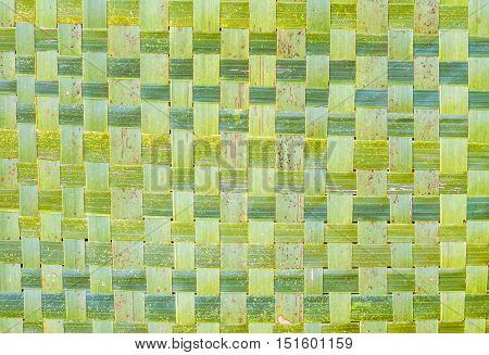 Close up Zigzag interlocking of coconut leaves