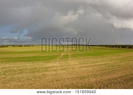 Cultivated Land With Rainbow