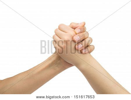 two hands of one man and one woman in arm wrestling with white background as concept fight between sexes