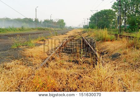 old overgrown unused rusty railroad in perspective view