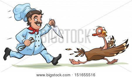 Cook with knife pursues frightened turkey. Fun concept for Thanksgiving Day. Isolated on white vector cartoon illustration