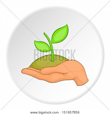 Sprout on palm logo. Flat illustration of sprout on palm vector logo for web