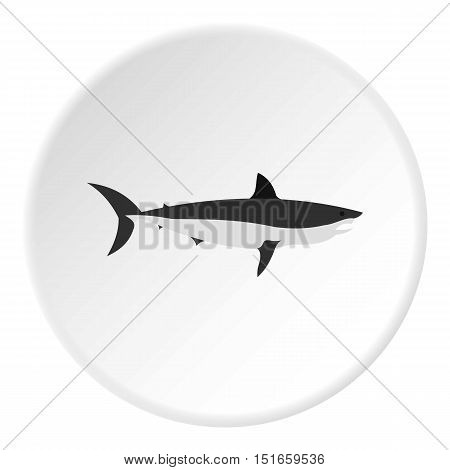 Shark icon. Flat illustration of shark vector icon for web design