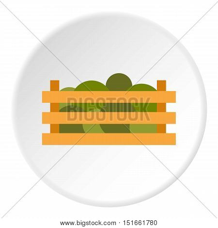 Wooden crate with vegetables icon. Flat illustration of wooden crate with vegetables vector icon for web