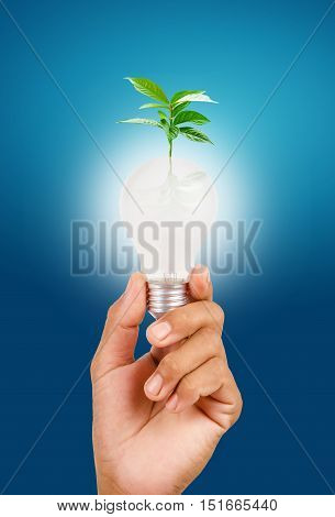 Sustainable resources renewable energy and environmental conservation concept.