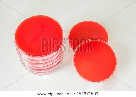 Blood Agar (ba Agar)-selective Media For Bacteria Growth.